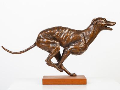 Running Greyhound image 3