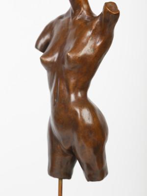 Female Torso image 2