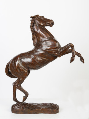 Rearing Horse image 3